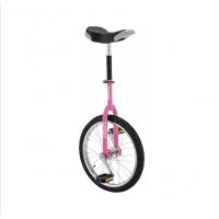 Fishbone Monocycle Sport 18 - Val de Loire Vélo Tours et Blois